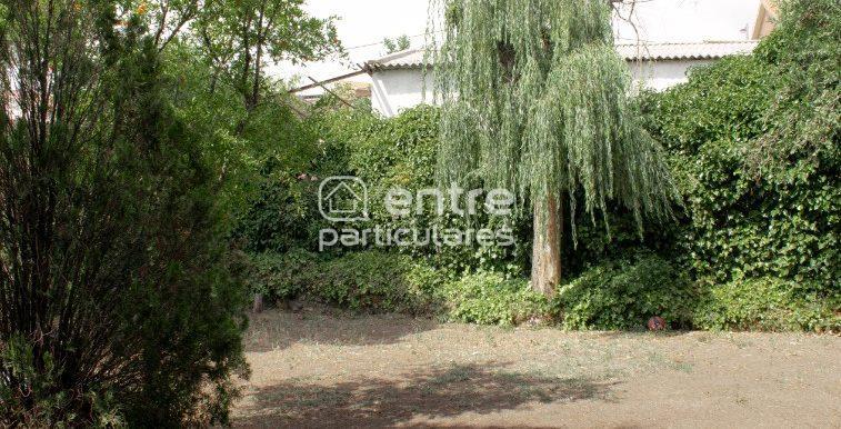 16 jardín