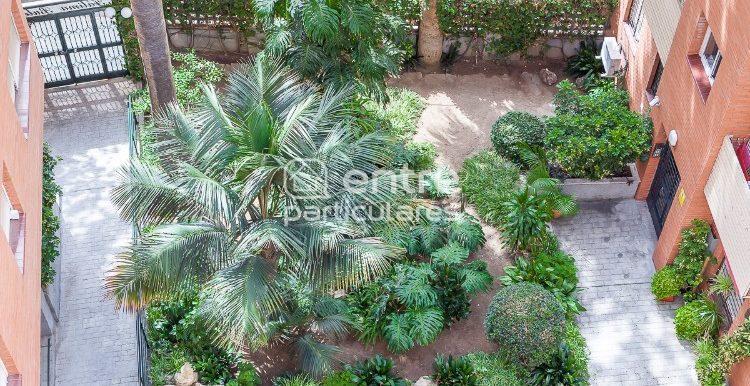 3. Vista aérea parcial del jardín.