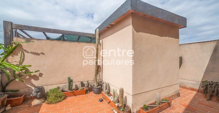 4. Terraza comunitaria. Jardín cactus zen.