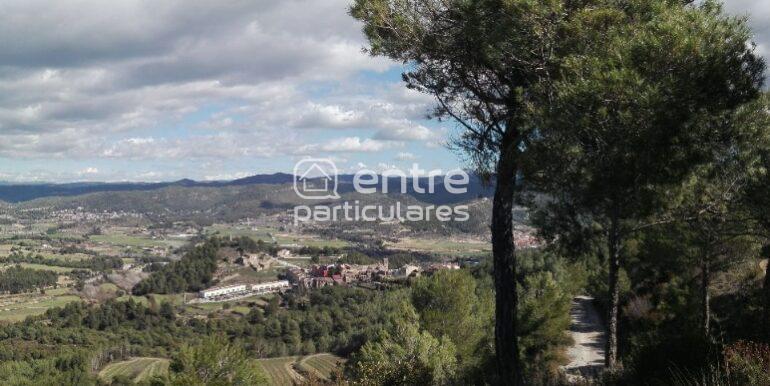Vistes Castellgalí