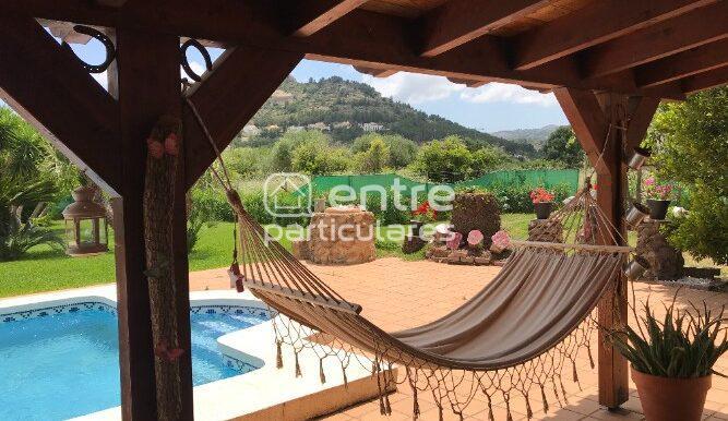 Entre naranjos foto relax hamaca
