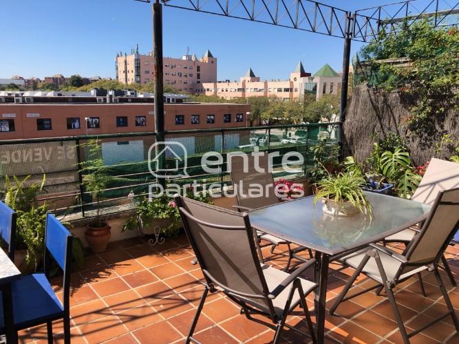Piso 50 m2, terraza 25m Palacio Congresos, Sevilla